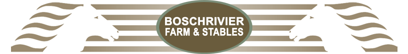 Logo of Boschrivier Farm and Stables, Plettenburg Bay Self-catering Cottage and Horsetrails